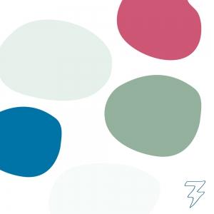 Pit Coaching Logo Christelijke Coaching Blitz Ontwerpt kleurenpalet