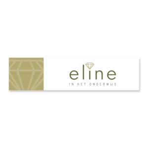 Eline in het onderwijs_Linked In_Blitz Ontwerpt Logo